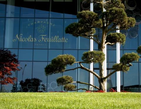 EDF – Nicolas Feuillatte